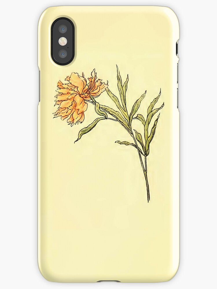 Spring Awaits iPhone Case by Pamela Phelps