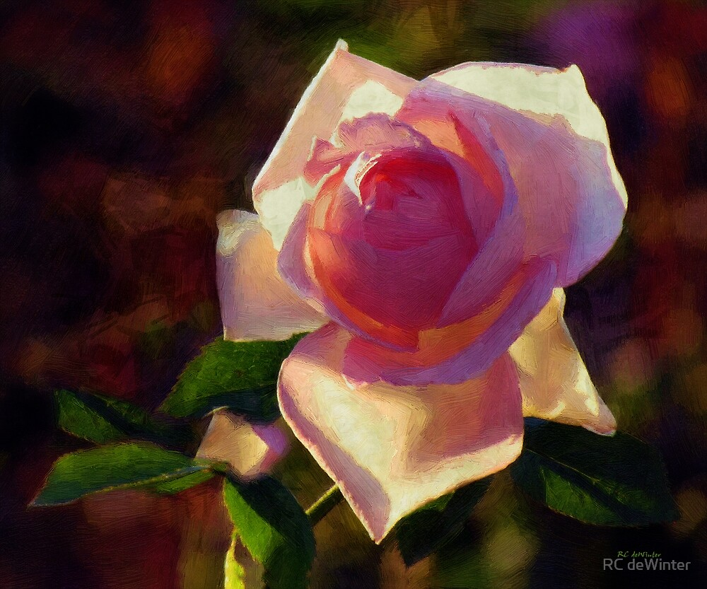 Flamboyant by RC deWinter