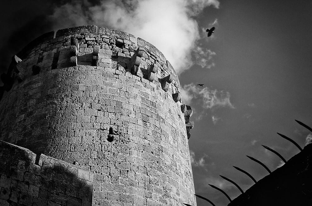 Ancient Guard by Marco Borzacconi