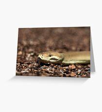 Olive Python Greeting Card