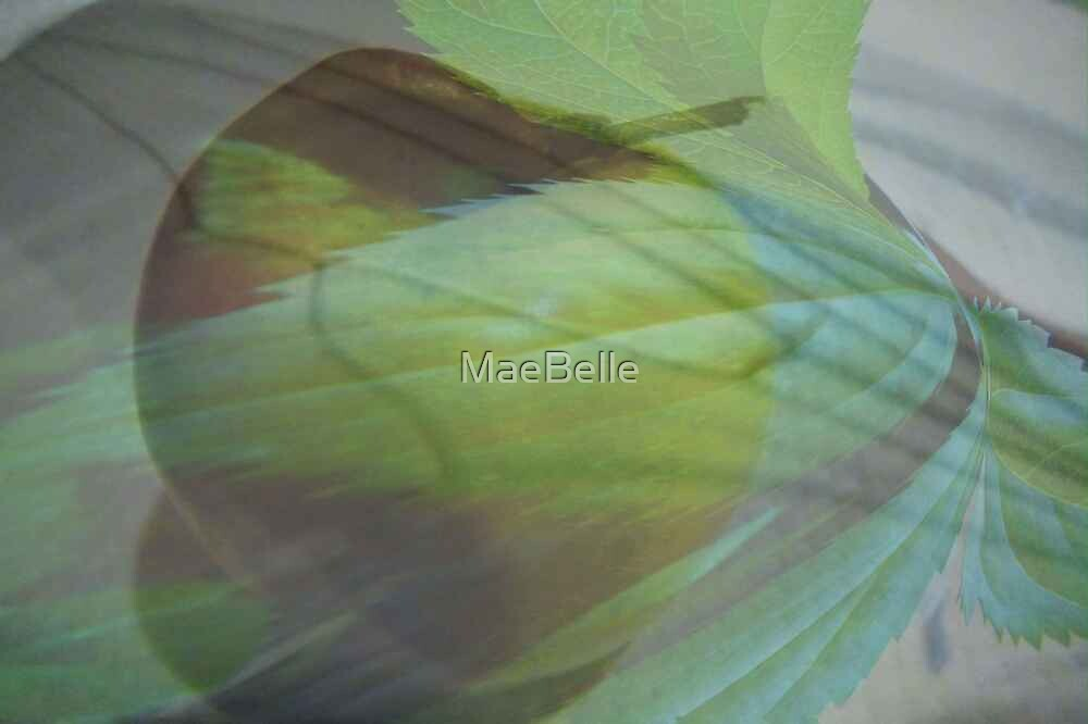 Which Comes First, The Apple or The Tree? by MaeBelle