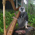 Harpy Eagle Harper by Felfriast