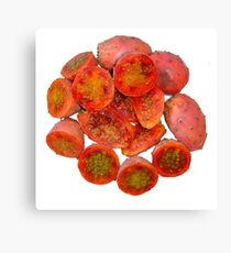Tropical Red Prickly Pear Fruit  Canvas Print