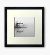 Loch Ard trees in the mist Framed Print
