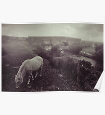 Foggy day in Dartmoor Poster