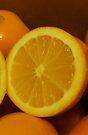 Open Orange Panel #2 of 3 (Please read description) by Stephen Thomas