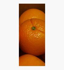 Open Orange Panel #3 of 3 (Please read description) Photographic Print