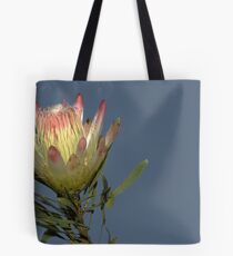 Against The Afternoon Sky Tote Bag
