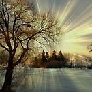 Setting sun © by Dawn Becker