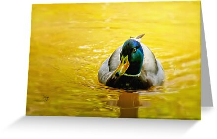 On Golden Pond by Lois  Bryan