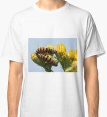 Cinnabar moth caterpillar Classic T-Shirt