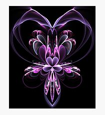 The Valentine Orchid Photographic Print