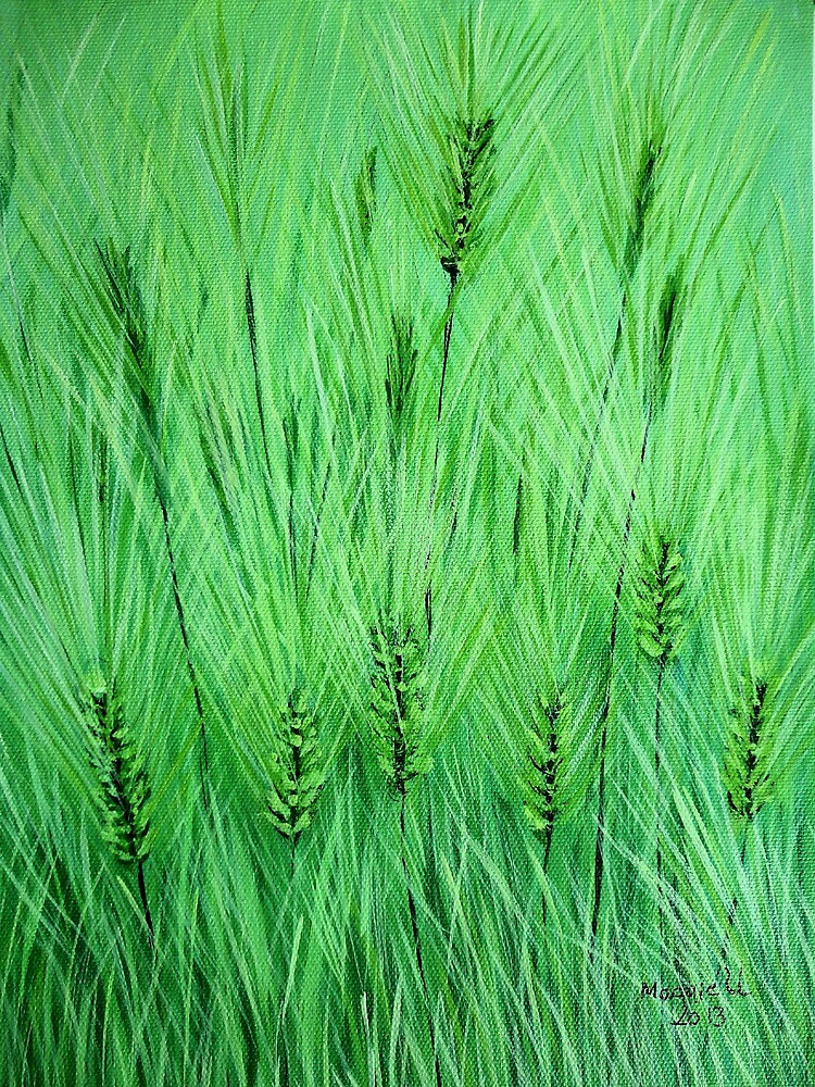 Green Wheat by maggie326