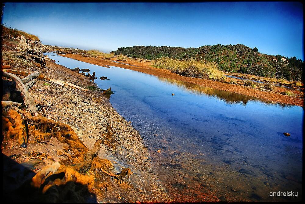 Otuwhero Inlet by andreisky