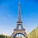 Eiffel Tower in Paris, France by gianliguori