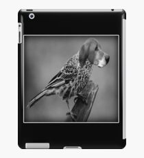 ☝ ☞ HE'S A BIRD DOG IPAD CASE ☝ ☞ iPad Case/Skin