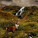 Monarch of the Glen by Gary Murison