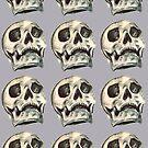 Skulls by Lauren Draghetti