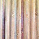 Bamboo by pjwuebker