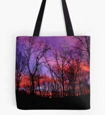God Painted The Winter With Color Tote Bag
