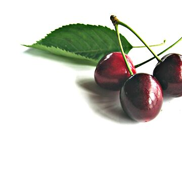 Cherry by scream2