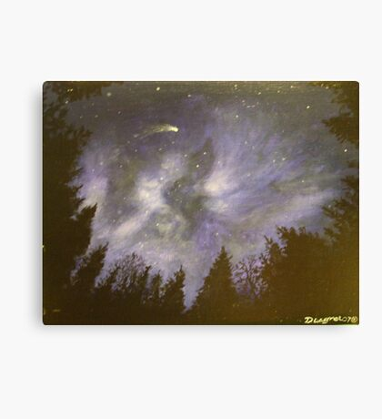 Night in the forrest Canvas Print