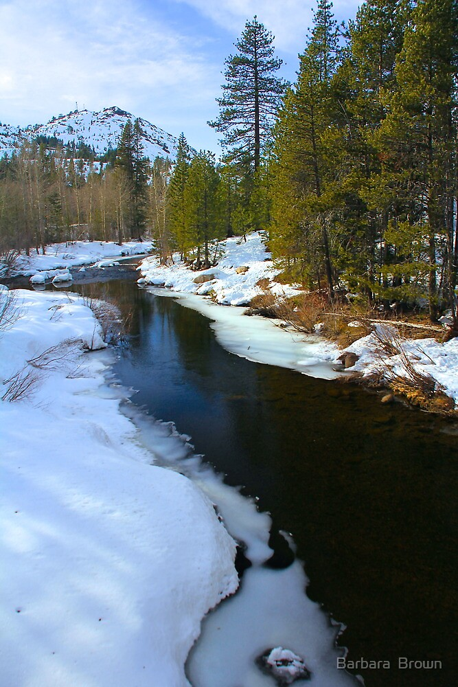 Flowing Through the Snow by Barbara  Brown