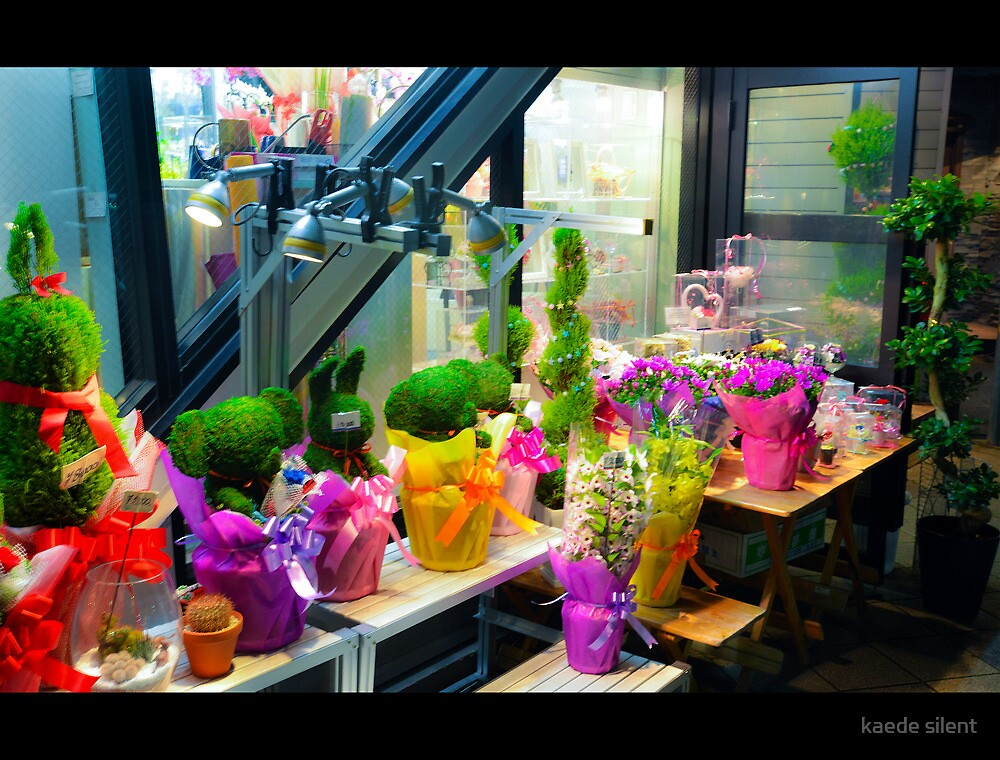 flower shop. by imagesbyhanson