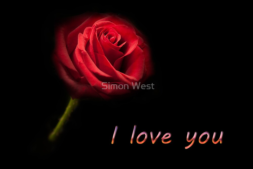 """""""I love you - Single Red Rose"""" by Simon West 