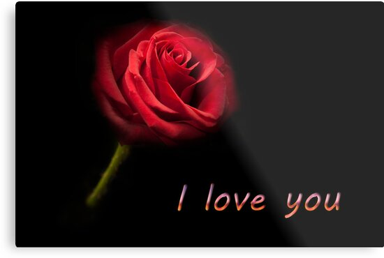 I Love You Single Red Rose Metal Prints By Simon West Redbubble
