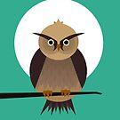 Owl by volkandalyan