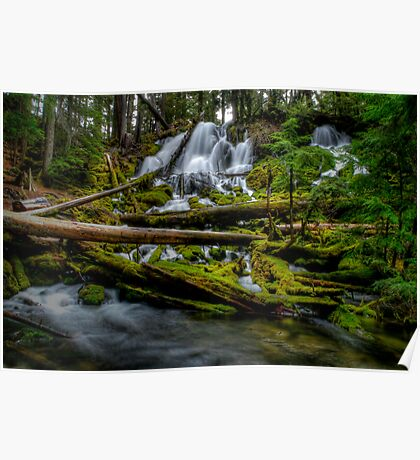 Coldswater Falls Delight Poster