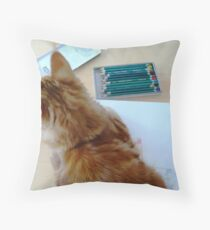 Cat & Colors Throw Pillow