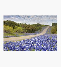 Texas Bluebonnet Highway in the Texas Hill Country Photographic Print