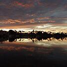 Phoenix Sunset by jlv-