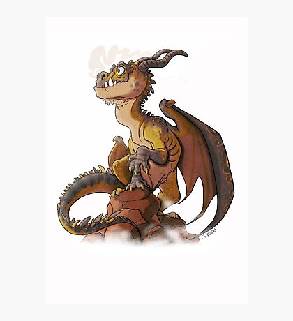 It's a dragon! Photographic Print