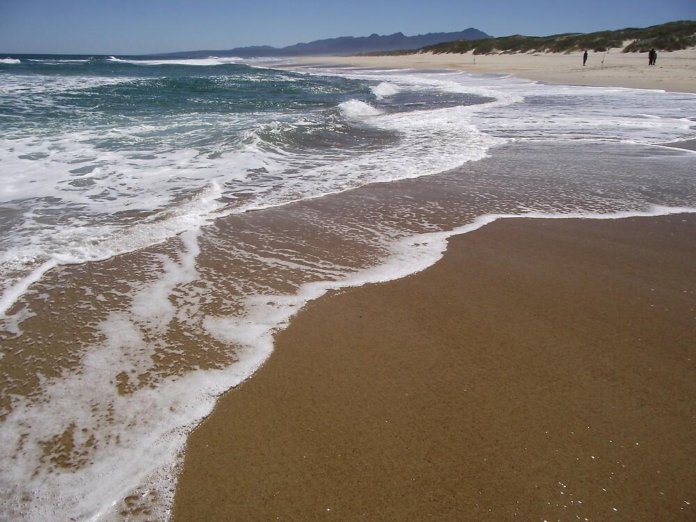 surf fishing at Ocean Beach, Strahan by gaylene