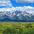 Mighty Grand Tetons, Wyoming by Claudio Del Luongo