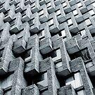 Modernism by Carlos Neto