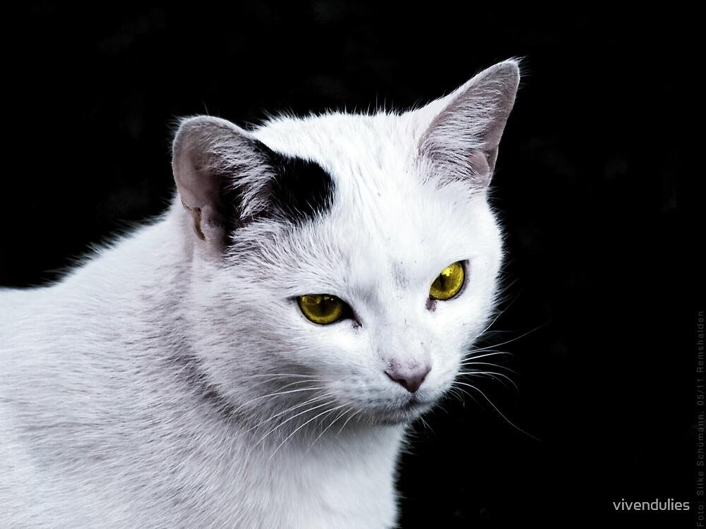 Cat Portrait VRS2 by vivendulies