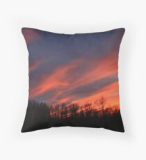 Streaking Across The Sky Throw Pillow