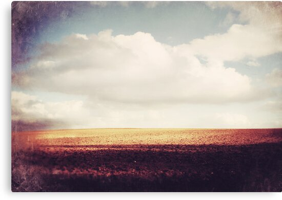 Endless by Sybille Sterk