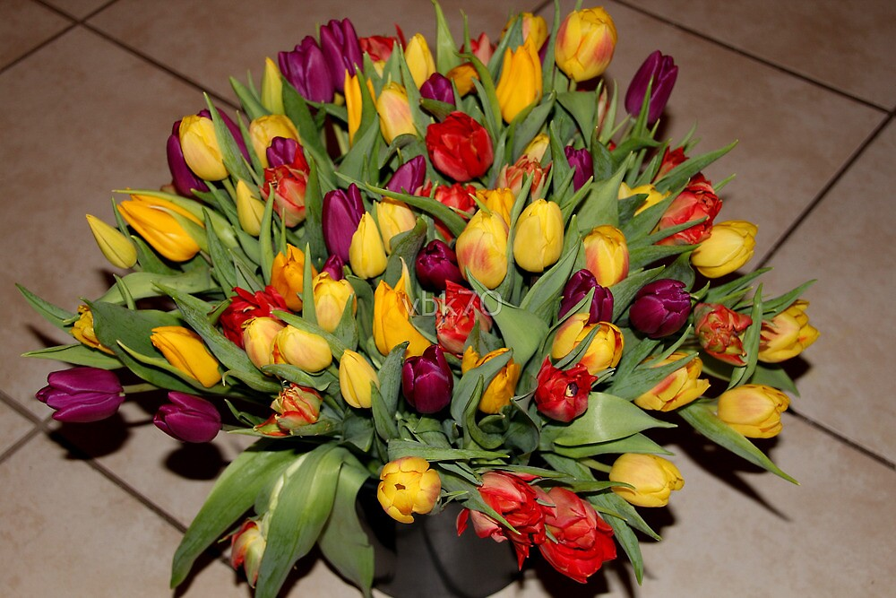 An Ocean Full Of Tulips II by vbk70