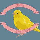 Canaries Call for Equal Rights by lucymbonner