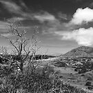Koko Head Crater from Makapuu Point by BrianDawson