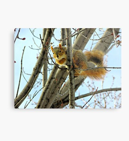 You Talkin' To Me? Metal Print