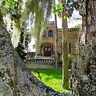 Villa Flora by Caren