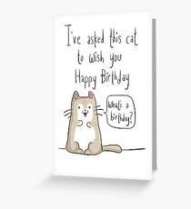 Cat birthday Greeting Card