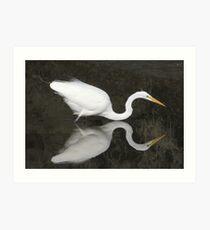 Great Egret Lake Ballet Art Print