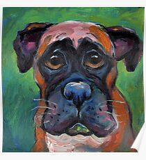 Cute Boxer dog puppy portrait painting by Svetlana Novikova Poster